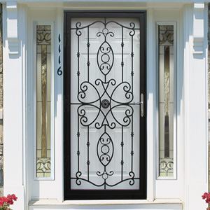 & Guardian Security Storm Doors u0026 Entry Systems - Styles pezcame.com